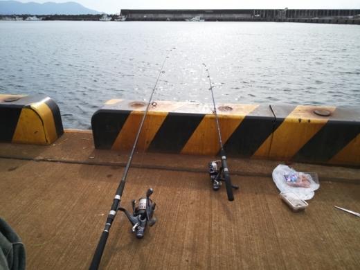 沼津港釣り (18)