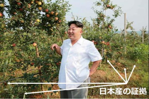 北朝鮮リンゴ