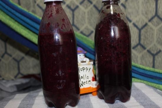 葡萄酒_3755 (1)