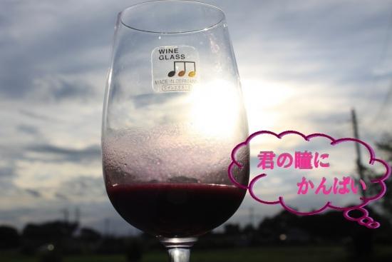 葡萄酒_3755 (6)