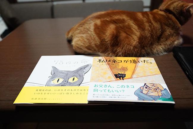 blog_000012811.jpg