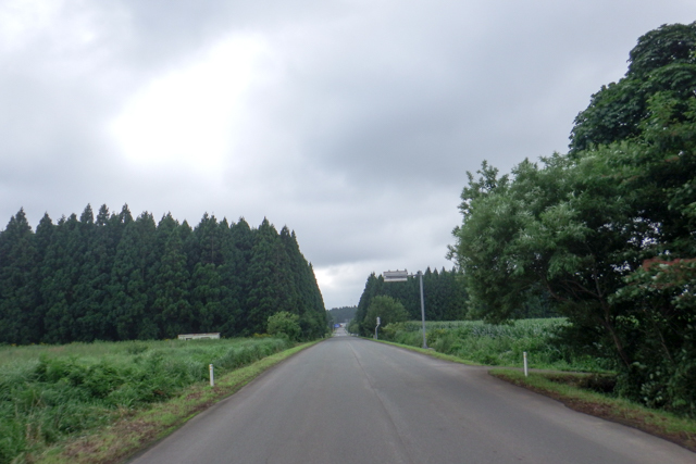 夏旅1(26)
