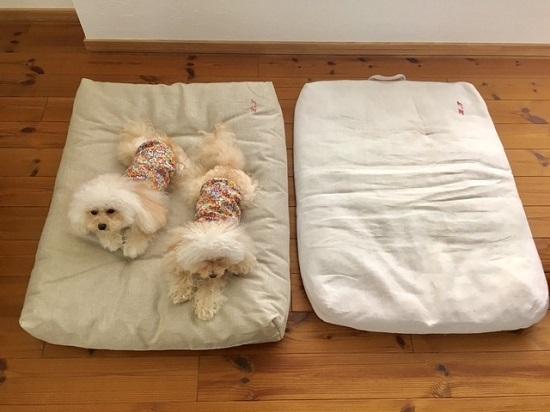 niche 雑貨+犬服=ニーシェ リネンベッド 2