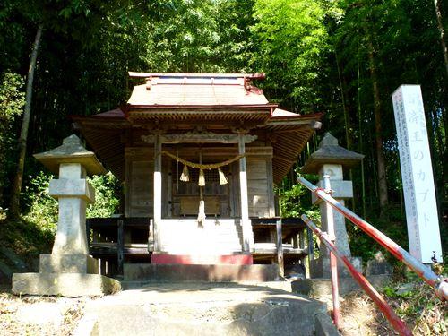 douyama4.jpg