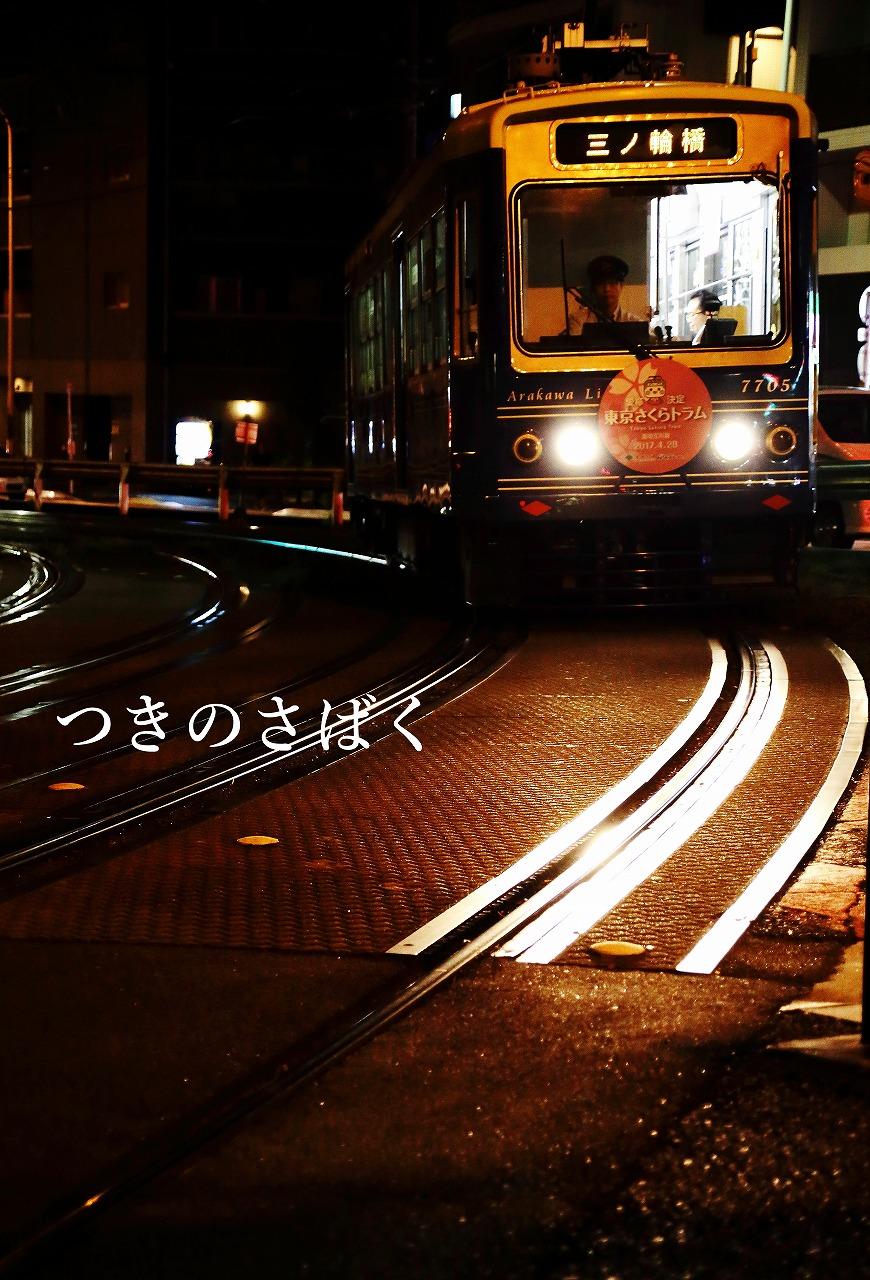 IMG_0259c3600_1.jpg