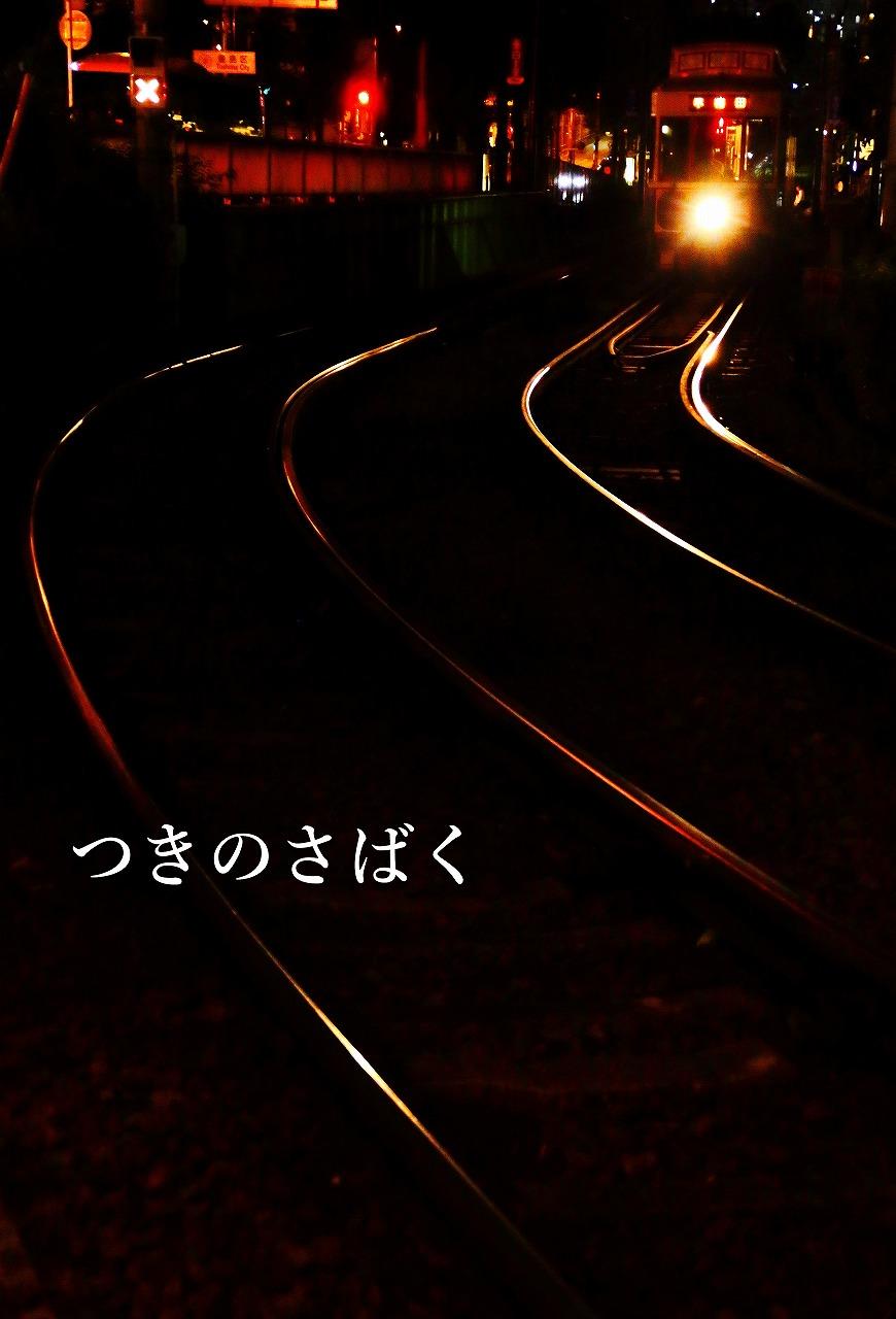 IMG_0382c4100_1.jpg