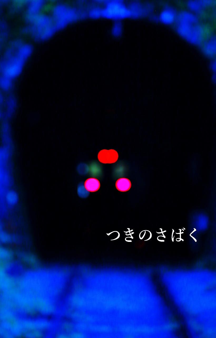 IMG_9340c3200_1.jpg
