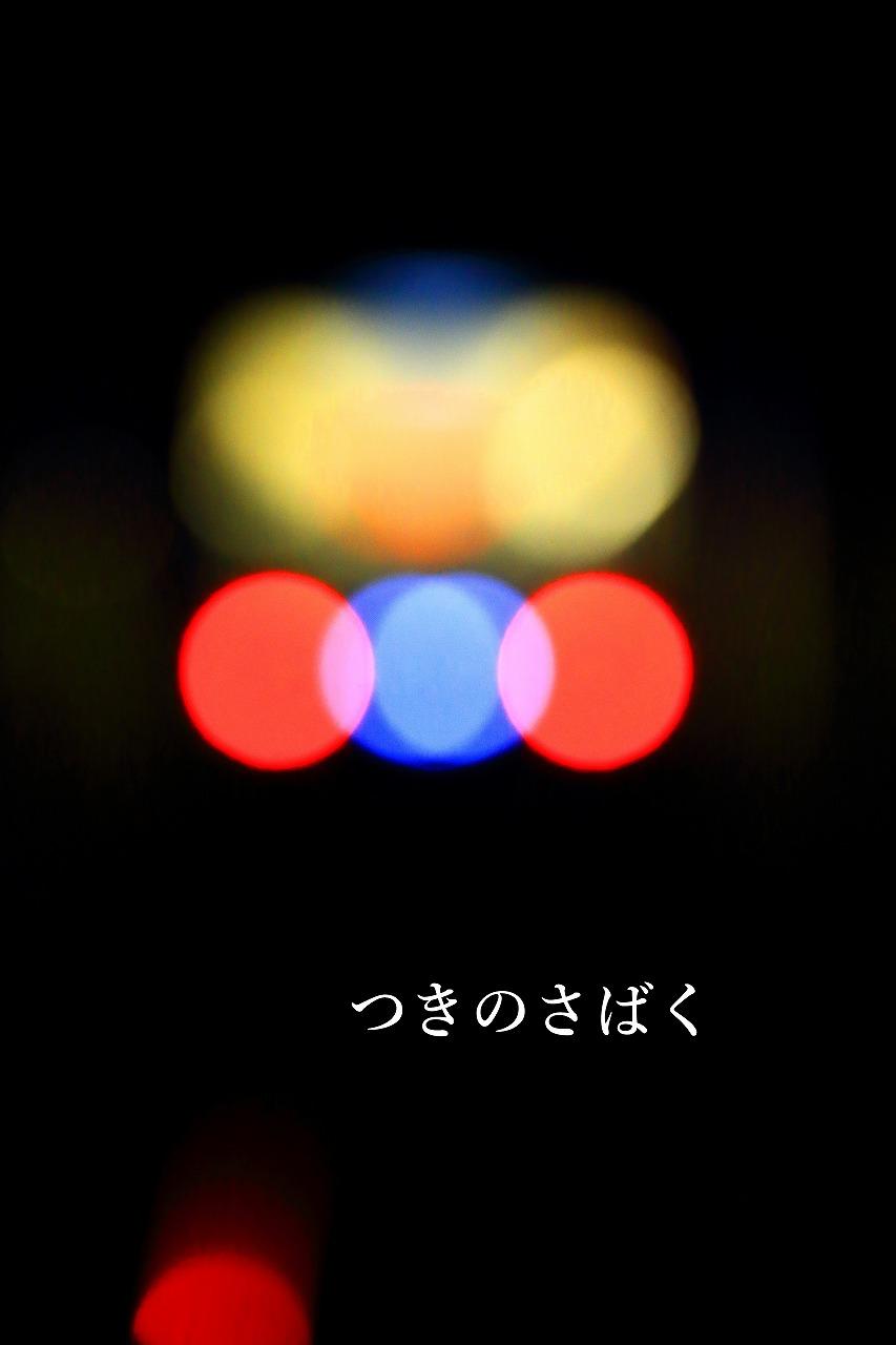 IMG_9402f3300_1.jpg