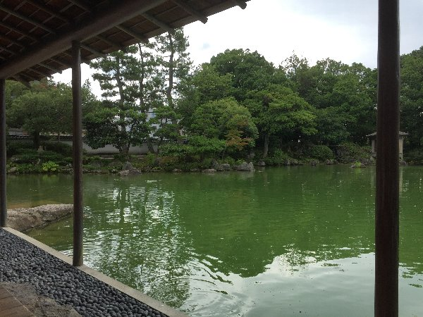youkoukani-fukui-018.jpg