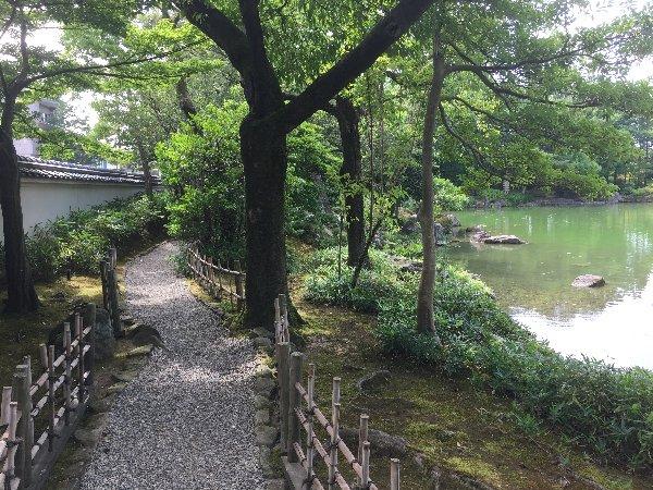 youkoukani-fukui-053.jpg