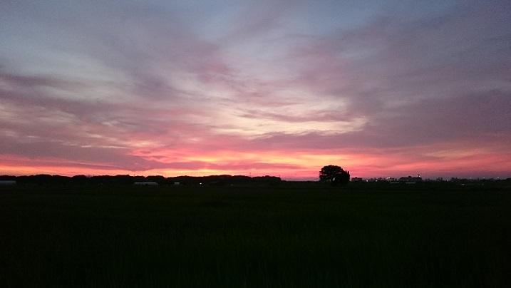 夏の夕焼け