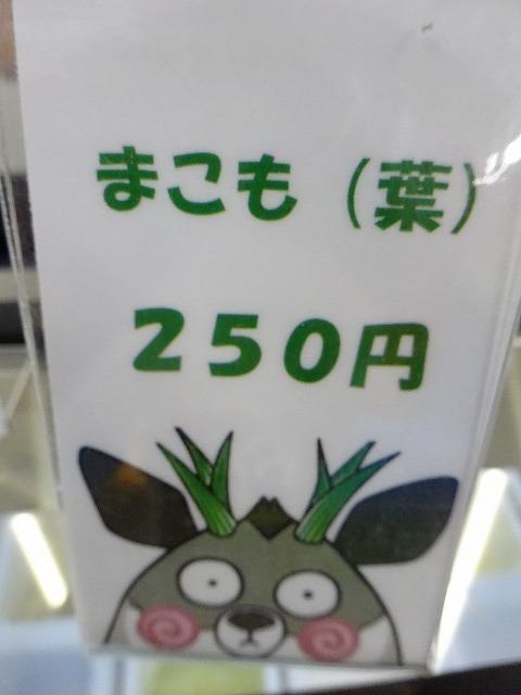 1707DSC02360.jpg