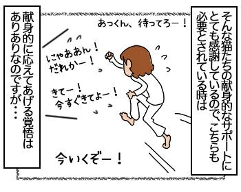 03082017_cat3mini.jpg