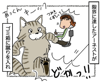05092017_cat3.jpg
