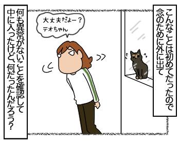 08082017_cat3.jpg