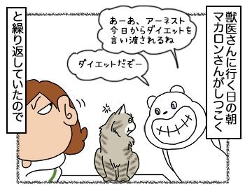 08092017_cat1.jpg
