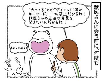 08092017_cat2.jpg