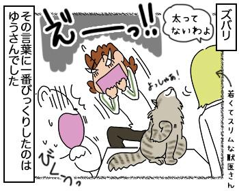 08092017_cat4.jpg