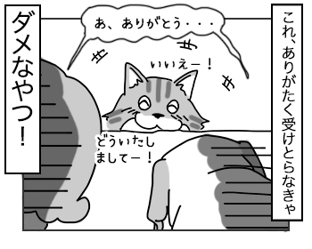 11072017_cat5mini.jpg