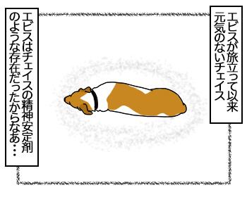 11082017_cat1mini.jpg