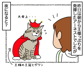 13092017_cat1.jpg
