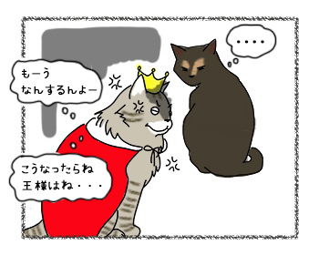 18092017_cat5.jpg