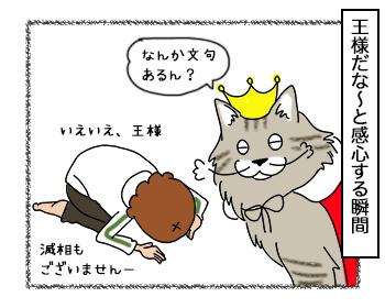 19092017_cat4.jpg