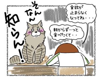 21082017_cat6mini.jpg