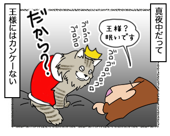 21092017_cat4.jpg