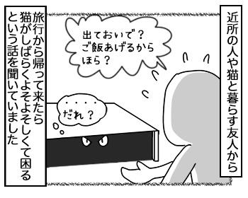 25092017_cat1.jpg