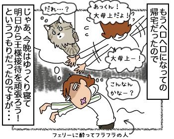 25092017_cat2.jpg