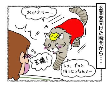 25092017_cat3.jpg
