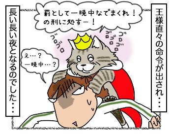 25092017_cat4.jpg