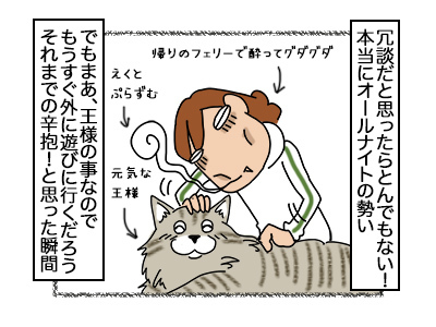 26092017_cat2.jpg