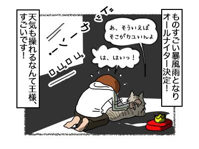 26092017_cat4.jpg