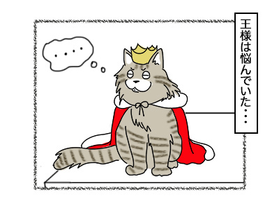 27092017_cat1mini.jpg