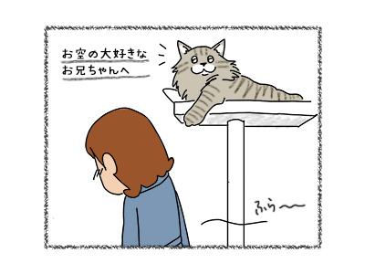 28092017_cat1mini.jpg