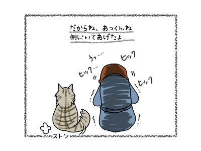 28092017_cat3mini.jpg