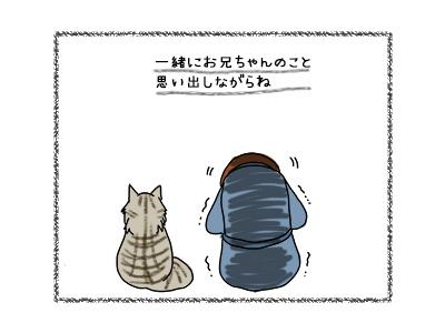 28092017_cat4mini.jpg