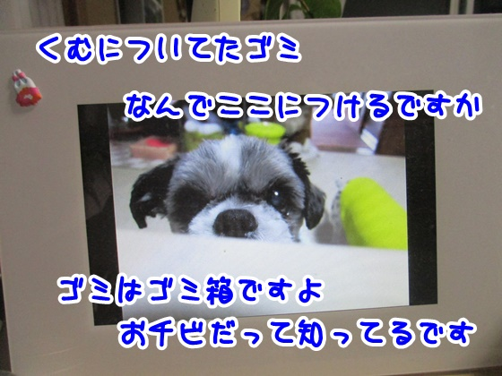 0924-07_201709241950326e1.jpg