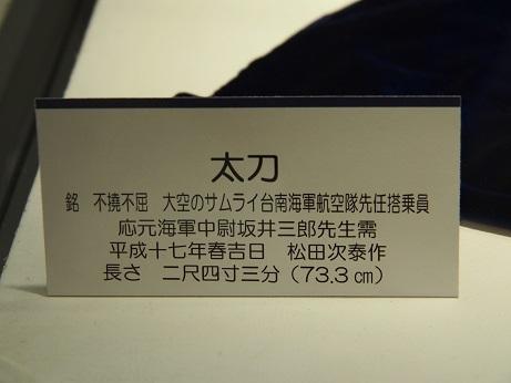 P9250134 大空の侍