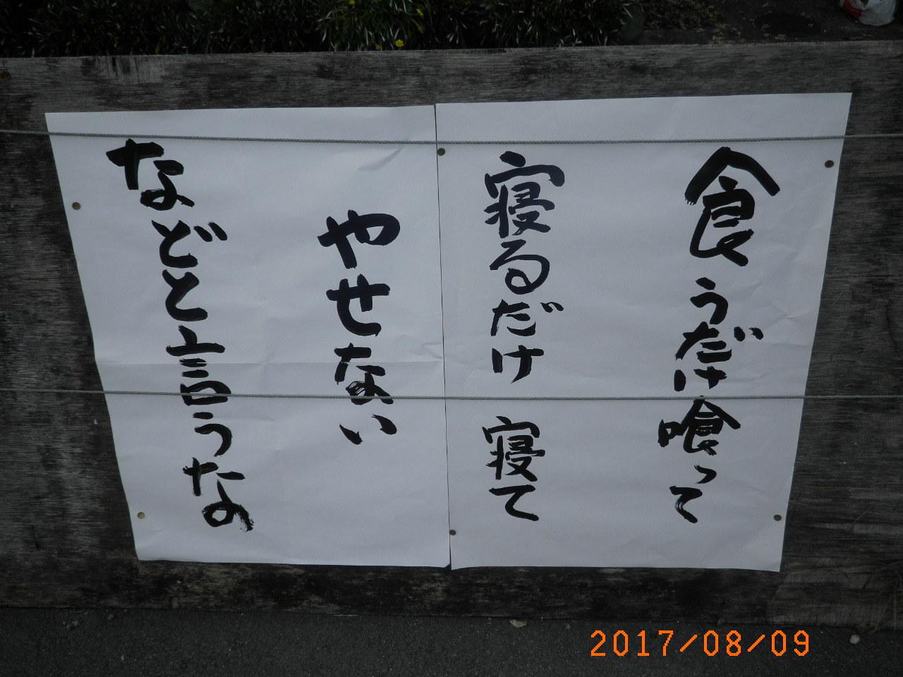 20170810050133f6e.jpg