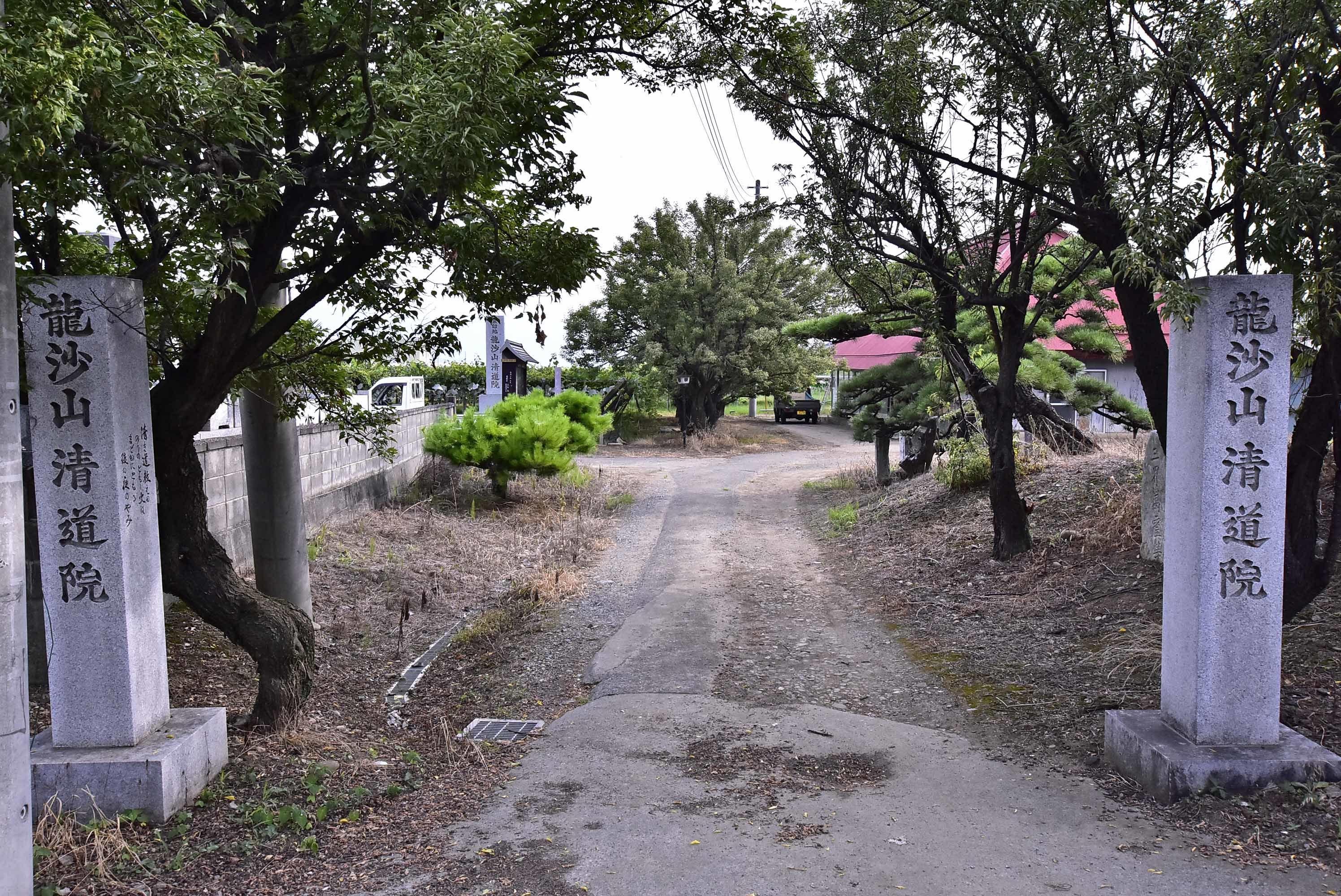 武田信成館