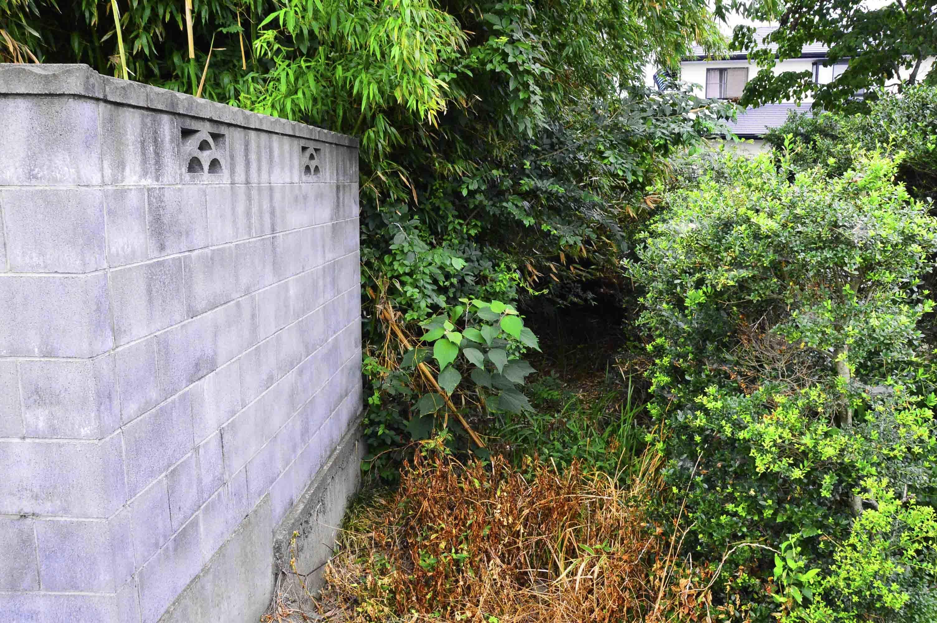 田土部城 登城北側の土塁と堀