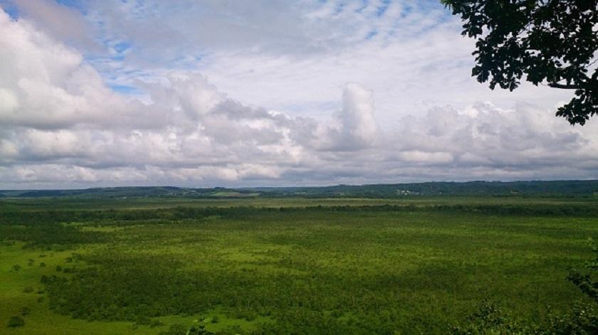 コッタロ湿原展望台2