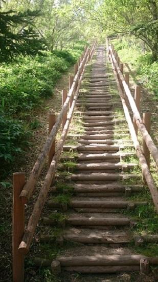 コッタロ湿原展望台 階段