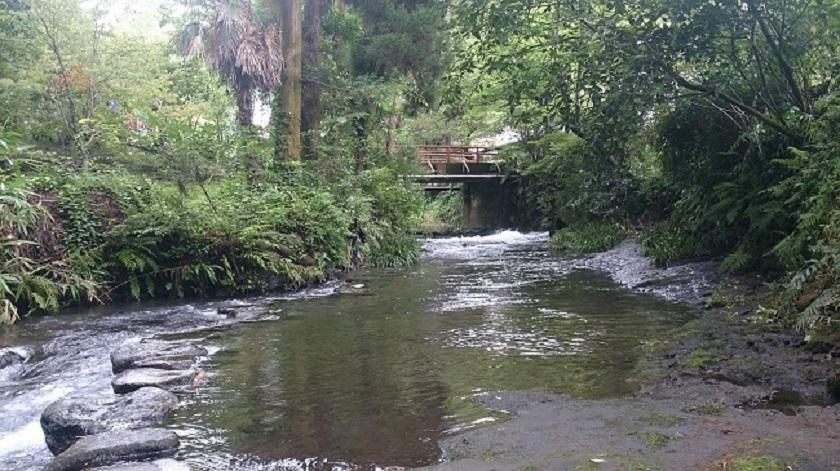 白川水源2