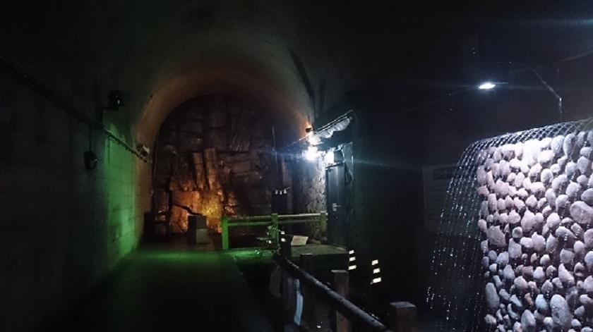 高森湧水トンネル 奥1