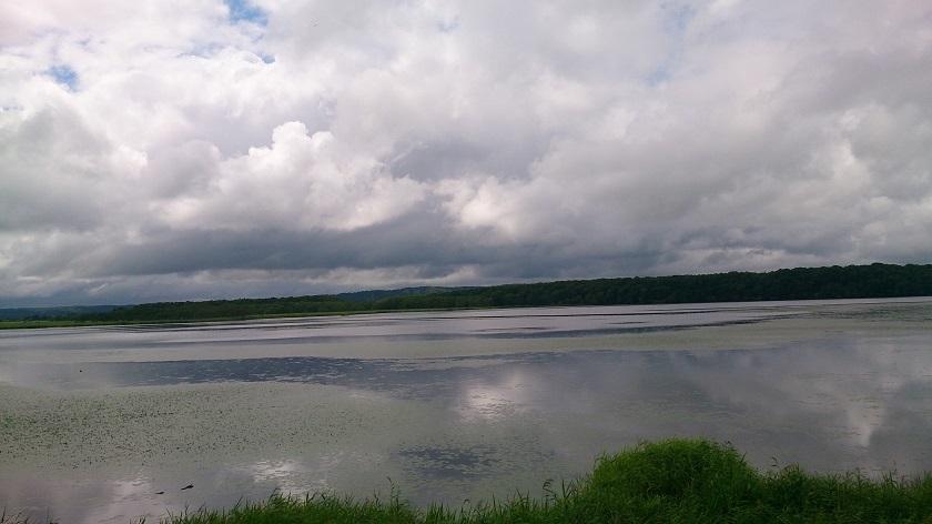 シラルトロ沼