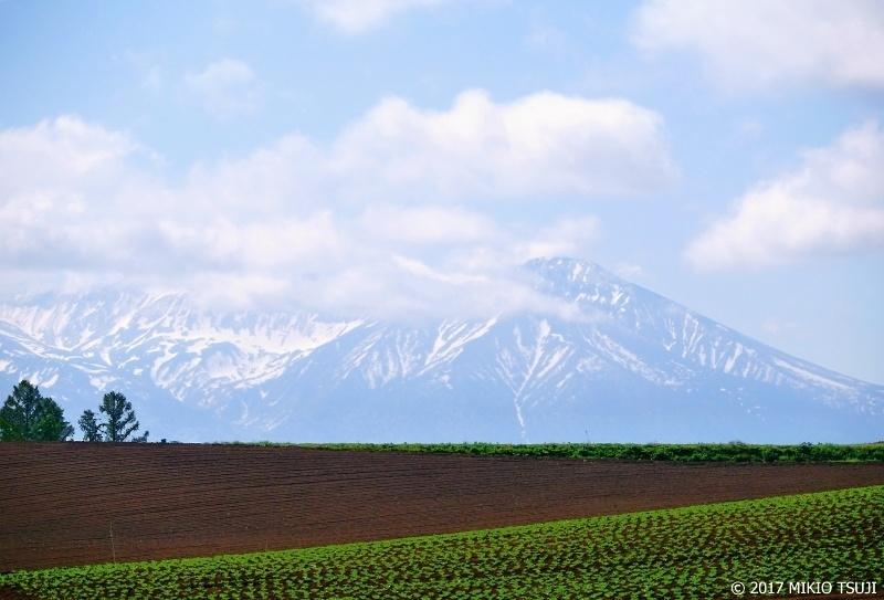 絶景探しの旅 - 0285 富良野岳の見える丘 (北海道 美瑛町)